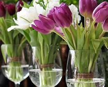Ünnepeljük a tavaszt!