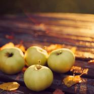 Az ősz ízei és hangjai