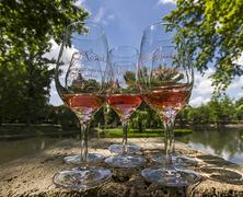 Tavaszi bor és gasztro fesztiválok