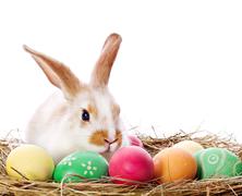Húsvéti programkavalkád