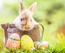 Húsvétváró programok